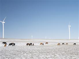China Windfarm