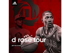 D Rose Tour