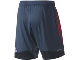 FCB Third Shorts back