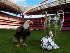 UCL Finale OMB & Lisbon Eagle
