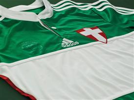Palmeiras 1