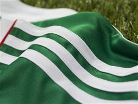 Palmeiras 7
