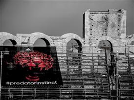 Predator Arena 27