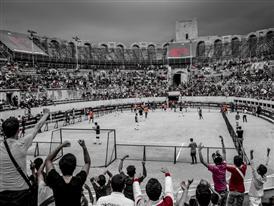 Predator Arena 30