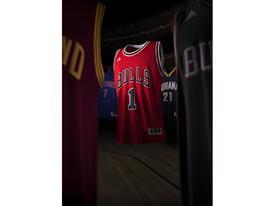 NBA Swingman 13