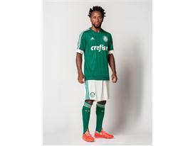 Zé Roberto usa a nova camisa esmeralda do Verdão