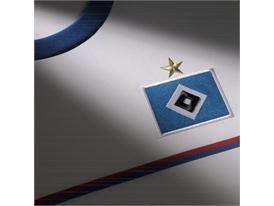 Hamburger SV Detail 1