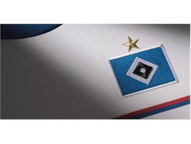Hamburger SV Detail 2
