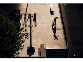 adidas Skateboarding Suciu ADV 22
