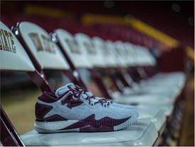 adidas Crazylight 2016 ASU 8