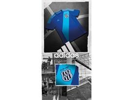 Ponte Preta Azul_02