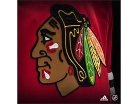 Blackhawk Crest