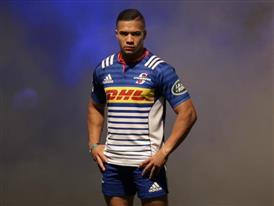 Stormers 2016 Jersey