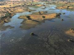 COP 21: Flood risk management in Africa