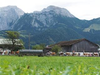 The Sound of the Alpine Pastures