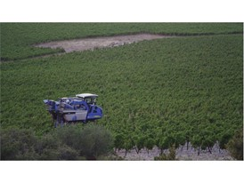 Far away shot of the VN2080 Grape Harvester from New Holland Agriculture at work in a Chablish vineyard