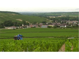 The VN2080 Grape Harvester from New Holland Agriculture at work in a Chablish vineyard 2