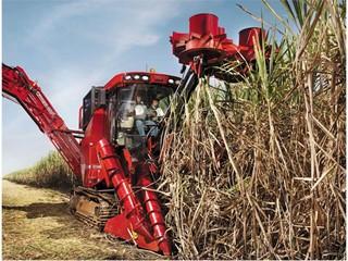 Case IH A8800 Sugarcane Harvester in Brazil