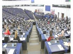 Round-up of the European Parliament's Plenary Session: EU Budget 2014-2020 - CAP Reform - Elections 2014