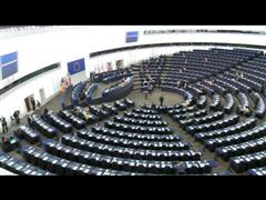 "Tax Fraud, Evasion and Havens: ""We Want our Money Back"" Say S&D Euro MPs"