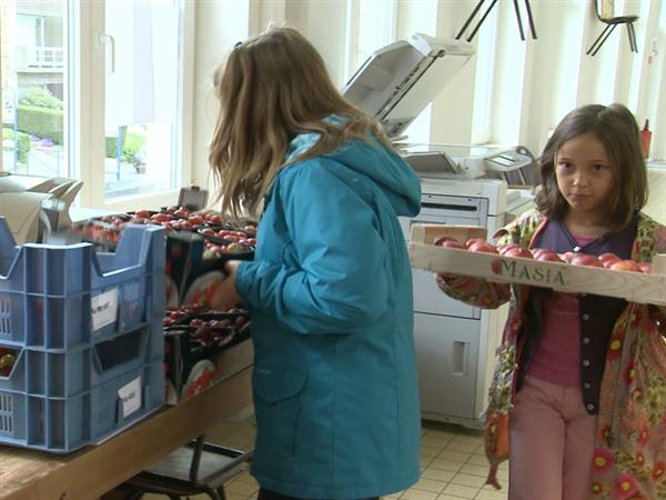 Healthy food at school: MEPs vote for free distribution of fruits, vegetables and milk