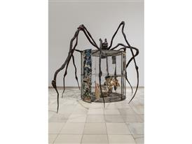 spider-3125-MG-1LG