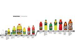 Evolution of the Bottle