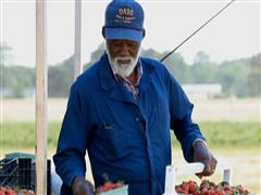 Final Claims Deadline Nears for Black Farmers in Historic $1.25 Billion Settlement