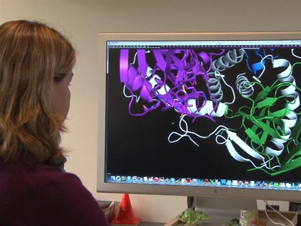 Your computer or smartphone can help search for Ebola cure