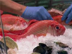 Eating Seafood May Help Lower the Risk of Dementia