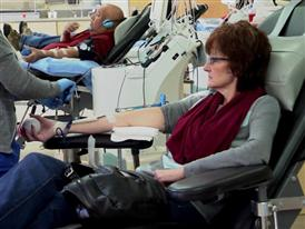 Slated Version: Frequent Blood Donors Benefit from Low-Dose Iron Supplements