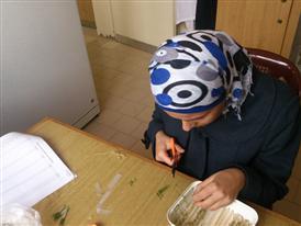 Miss Batoul Dawalibi- visru testing