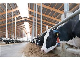 """Moderner Milchhof, Milchagrargenossenschaft """"Heideland"""" in Kemberg"""