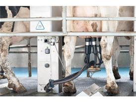 Automatisierter Melkvorgang
