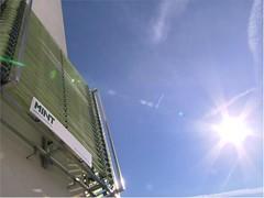 Algen: Von der Hausfassade zum Sternekoch