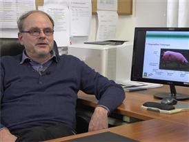 Professor Eberhard von Borell, Institut für Agrar- und Ernährungswissensch