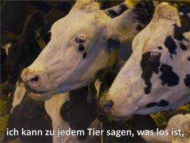 Tierwohl in der modernen Landwirtschaft - Kurzfilm 2'39 mit Untertiteln