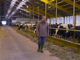 Günter Stöckel im Stall bei den Kühen