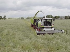 CLAAS JAGUAR 900 (498): Grass harvesting
