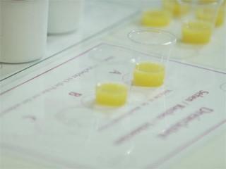 Tasten, fühlen, schmecken - Sensorik-Prüfer für Lebensmittel