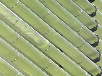 Algenanbau an der Hausfassade