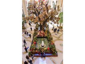 Palazzo Chinese New Year