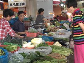 Cities Changing Diabetes Shanghai