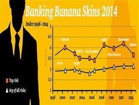 Banking Banana Skins Infographic-1-1000