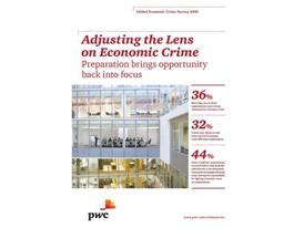 Adjusting the Lens on Economic Crime