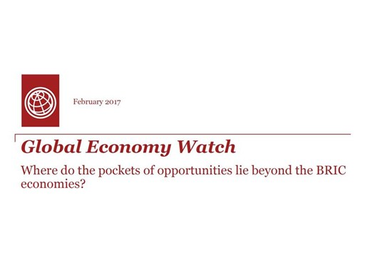 Global Economy Watch -- Where do the pockets of opportunities lie beyond the BRIC economies?