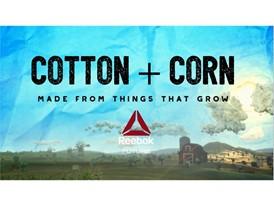 Cotton + Corn Image