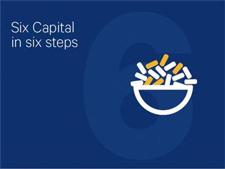 Six Capital in six steps