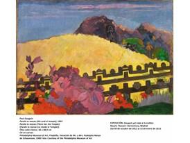 Gauguin - Parahitemarae