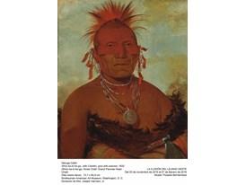 Horse-Chief